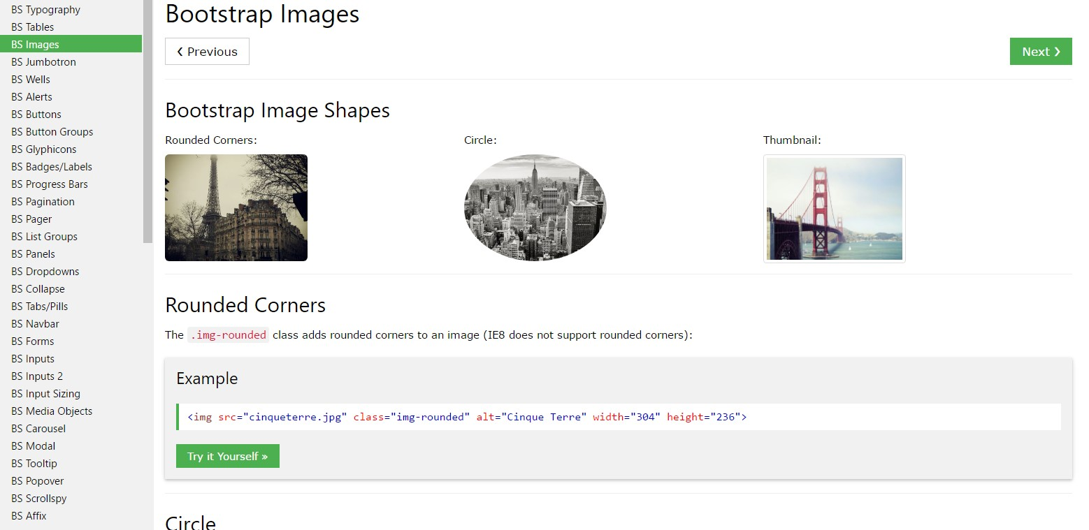 Bootstrap image  training